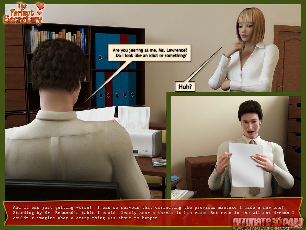 [3D] The Perfect Secretary