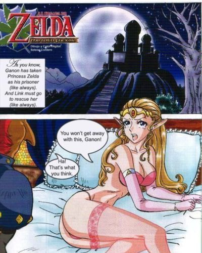 Zelda- The Wild Fucker