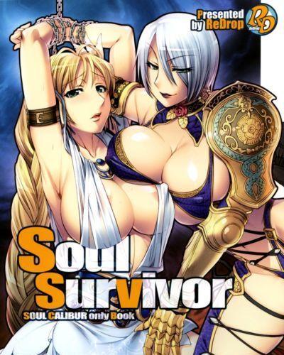 (C74) ReDrop (Miyamoto Smoke, otsumami) Soul Survivor (Soul Calibur) SaHa