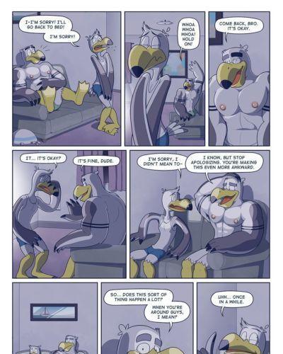 Brogulls - part 2
