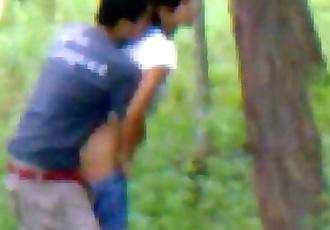 Desi girlfriend outdoor fucking with boyfriend 7 min