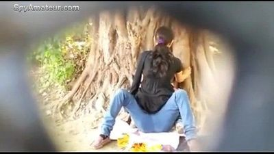 Spying on Indian Couple fucking in Park on SpyAmateur.com - 3 min