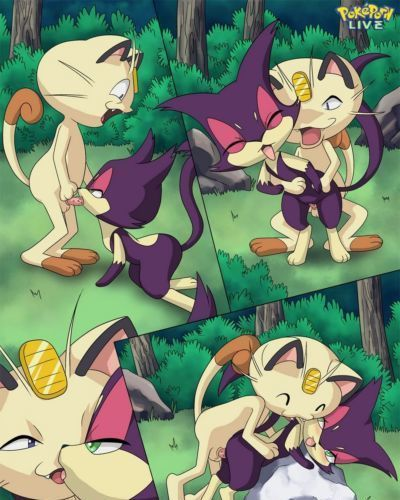 The Cats Meowth - part 2