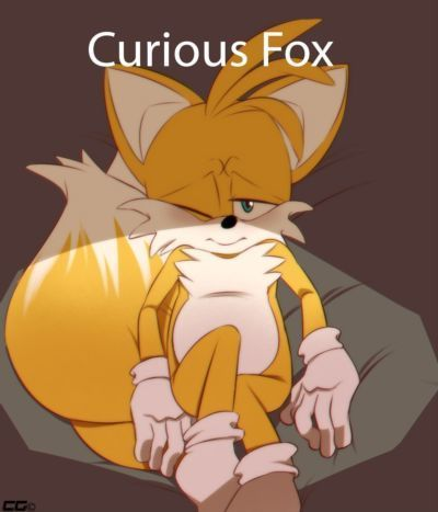 CrazedG Curious Fox (Sonic The Hedgehog)
