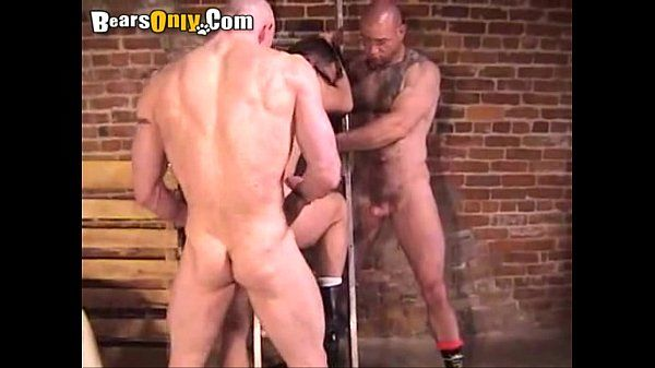 Pierced Bears Hot Threesome